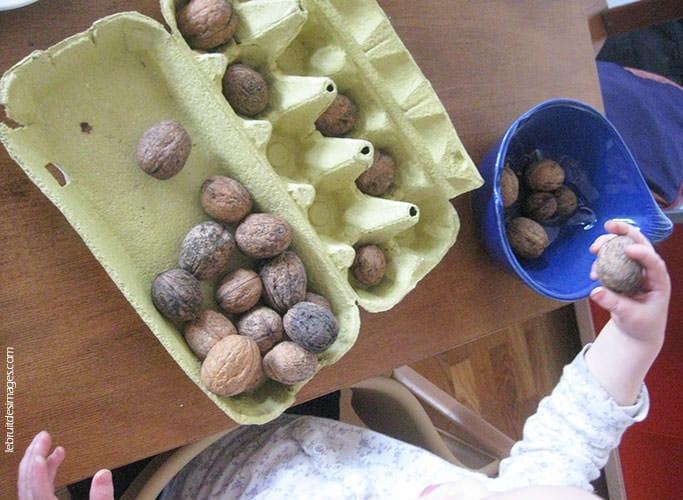 Une boîte d'œufs et des noix