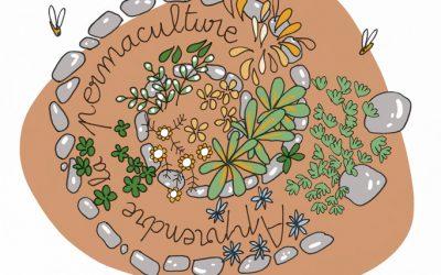 101 gestes écolos (98) : se mettre à la permaculture