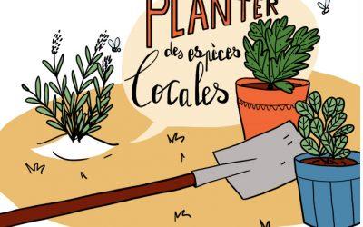 Geste écolo 111 : planter des espèces locales