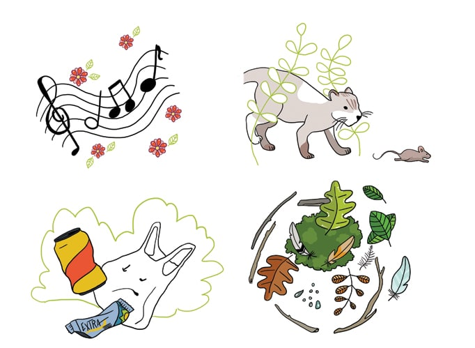 Illustration pour Eveil et Nature