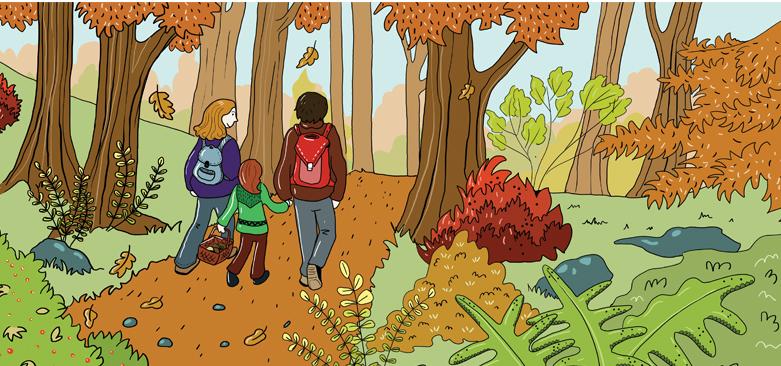 Marina Le Floch illustration Le Pèlerin