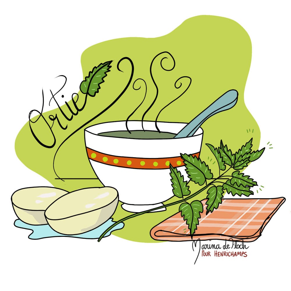 soupe à l'ortie